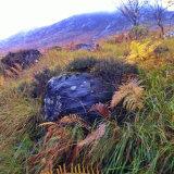 Glen Nevis Blue rock