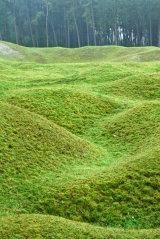 Vimy Ridge old trenches