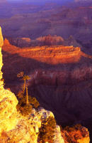 Yavapai point, Grand Canyon, Arizona