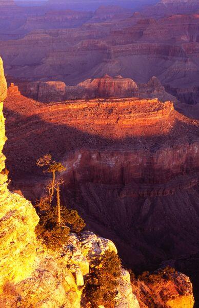 Yavapai point Grand Canyon USA