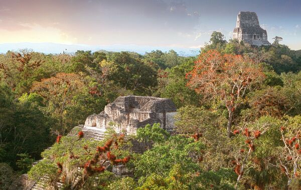Lost world Tikal Guatemala