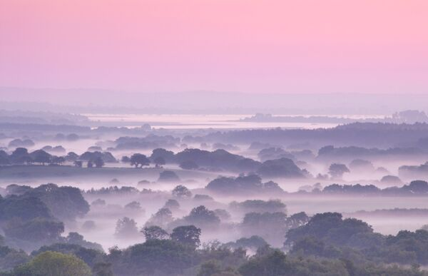 misty Purbek dawn Dorset