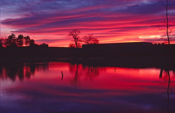 Apley Pool Sunset