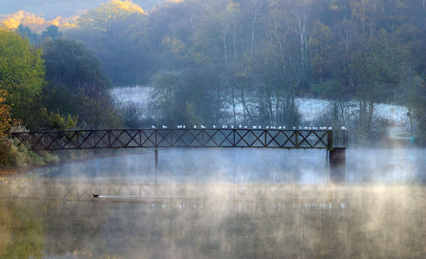 Wrekin Reservoir