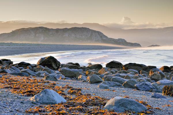 Seaweed and Boulders