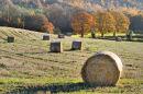 Wrekin harvest