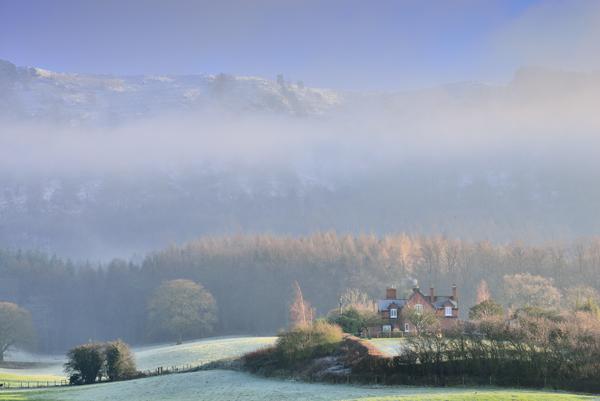 Misty Wrekin