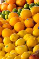 Canadian market citrus fruits