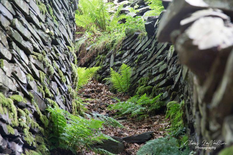 Miner's path, Dinorig, Llanberis