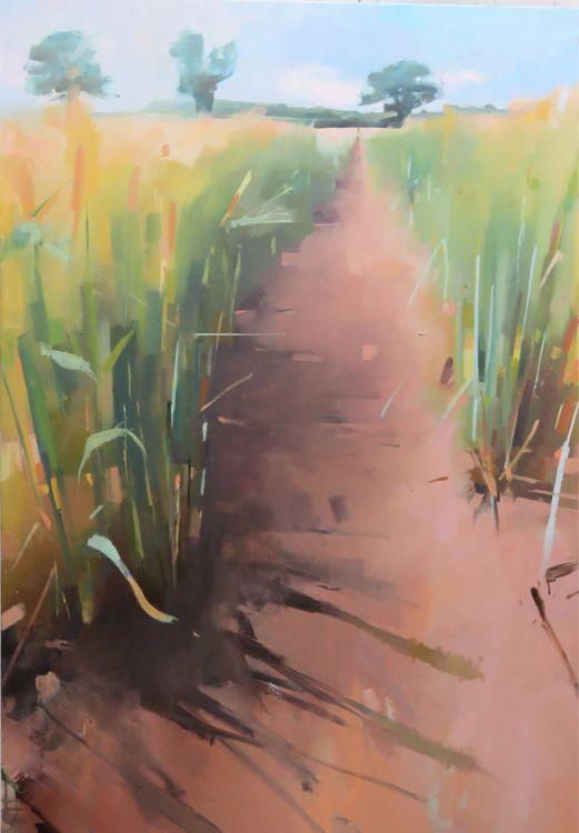 A Devon Barley Field, oil on canvas 122 x 76cm