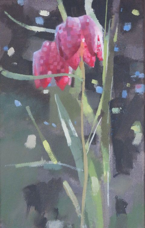 Snakeshead Fritillaries, oil on canvas 25 x 16cm.  Unavailable.