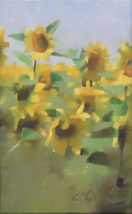 Spanish Field, oil on canvas 25 x 16cm