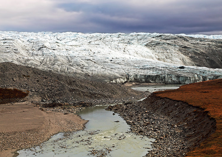Ross Glacier #4