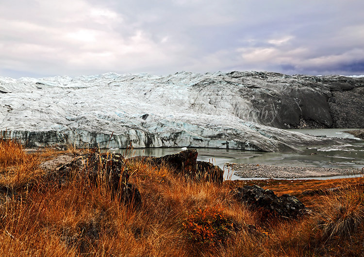 Ross Glacier #6