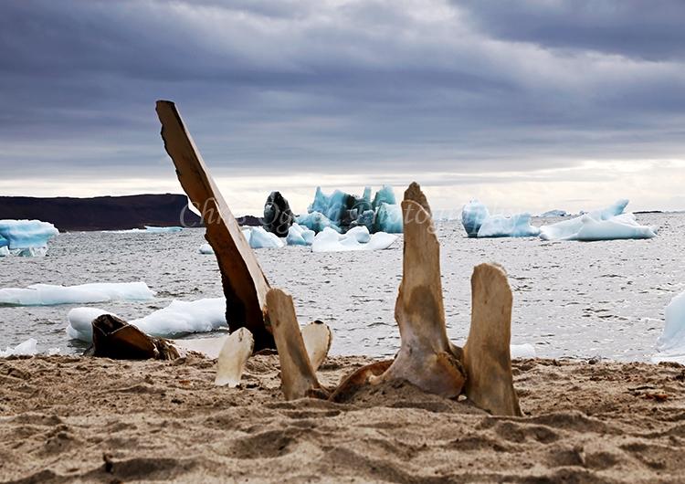Whale bones at Atanikerdluk #4