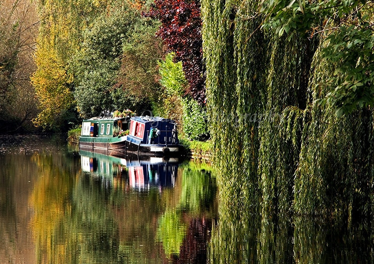 Grand Union Canal #4