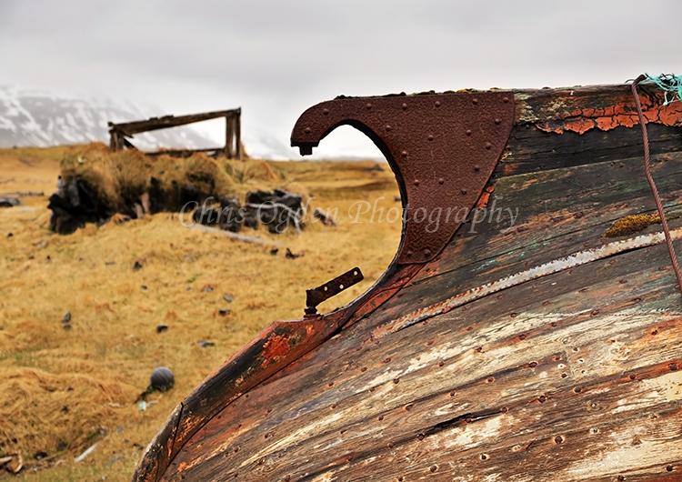 Old Boat at Reykjafjordur #1