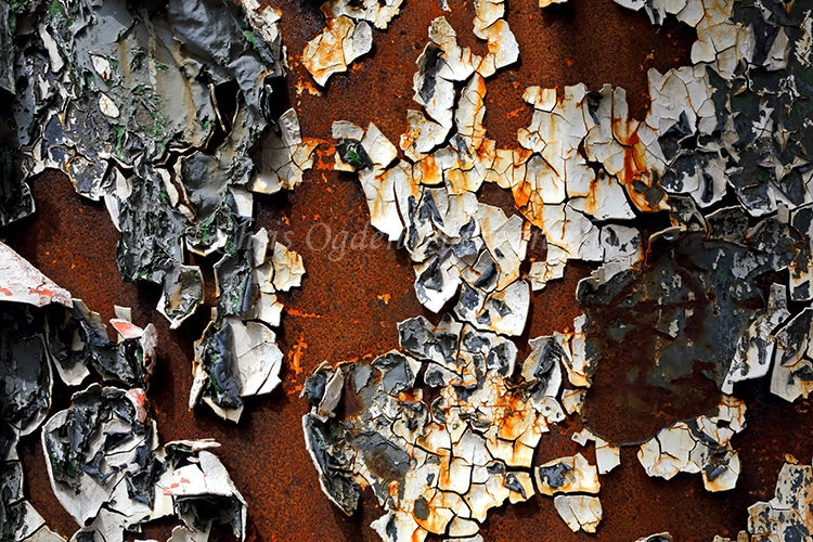 Rusting Whaling Industry Relics #2
