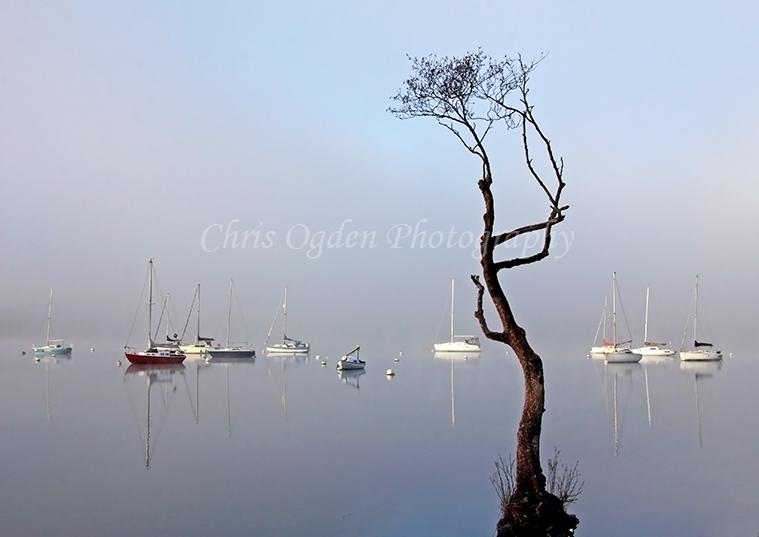 Lake Reflection #2