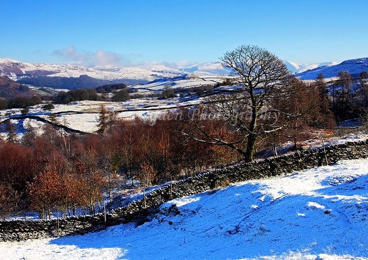 Winter in the Lakes #7