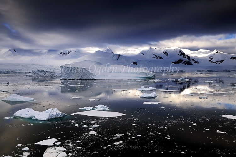Antarctic Light 4