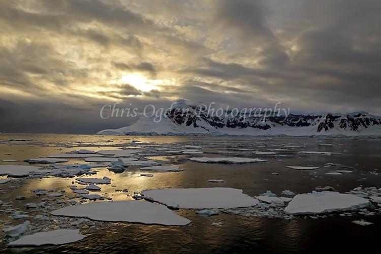 Golden Light in Antarctica