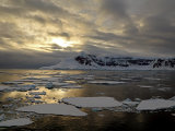 Golden Light in Antarctica