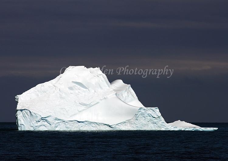 Iceberg #10