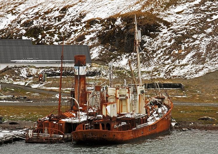 Whaling Ships