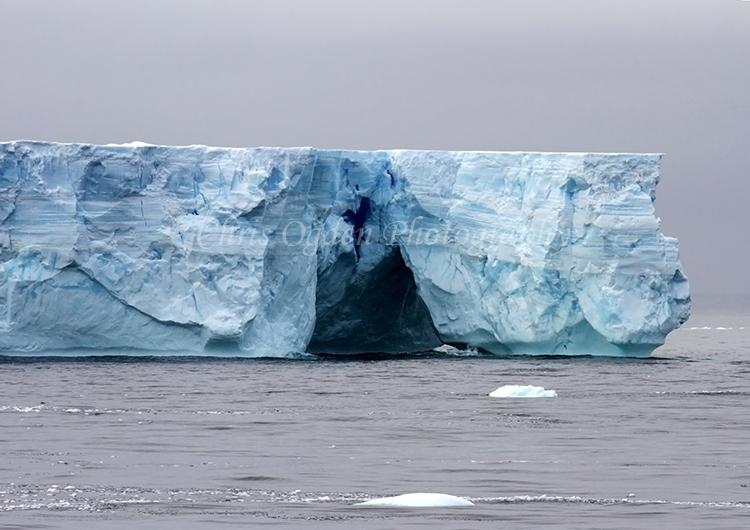 Iceberg #11