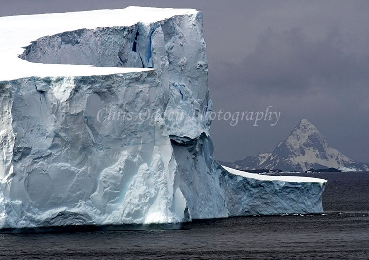 Iceberg #24