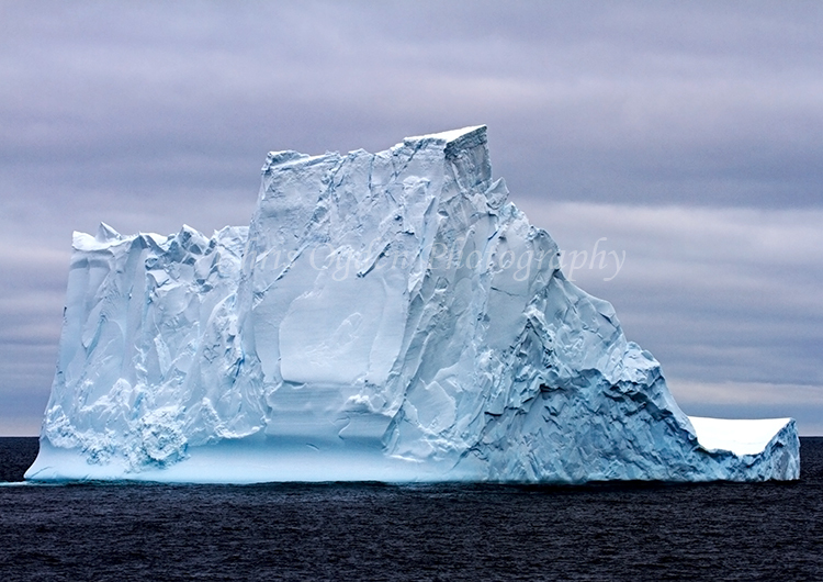 Iceberg #31