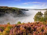 Autumn in the Calder Valley