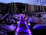 Night Lights in the Marina #2