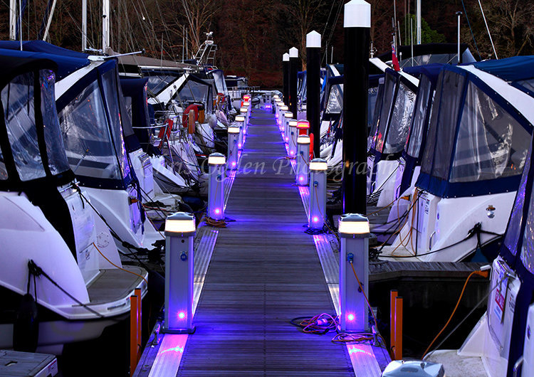 Night Lights in the Marina