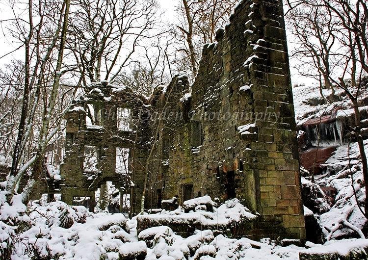 Winter at Starling Mill