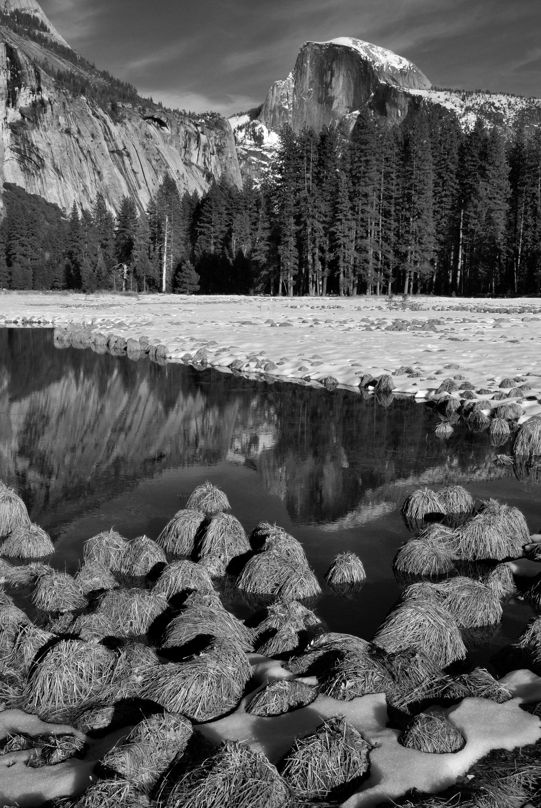 Half Dome from Cook Meadow