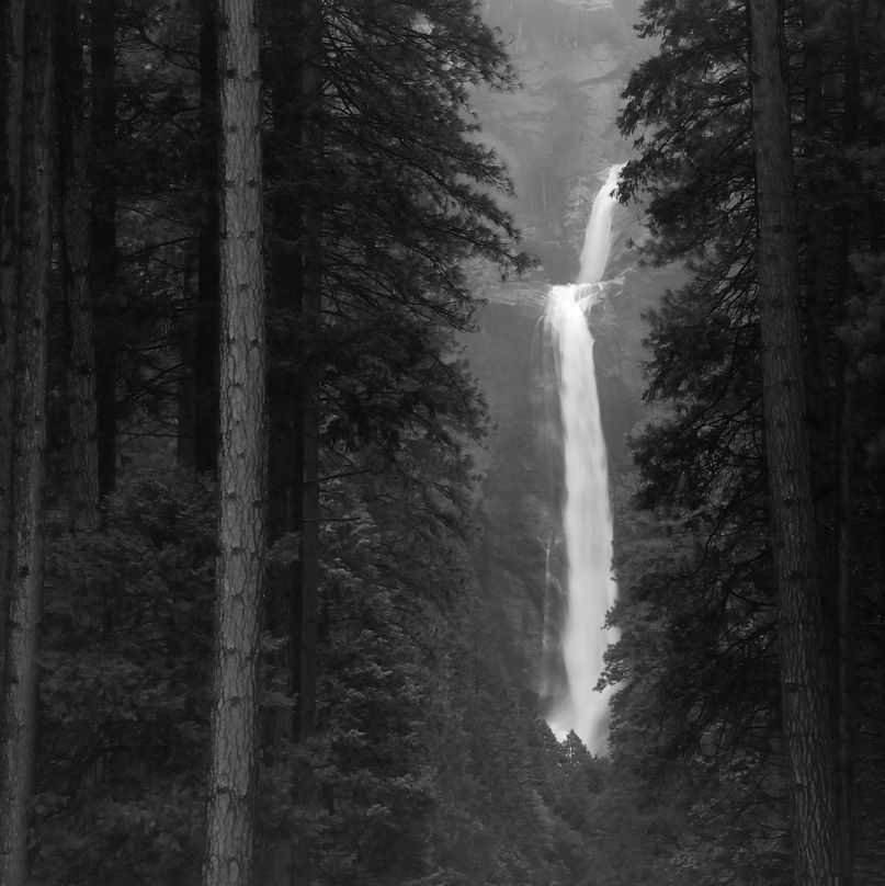 Yosemite Falls and Trees