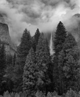 Trees and Upper Falls