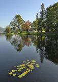 Arcadia Pond
