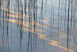 Eagle Lake Reflection 2