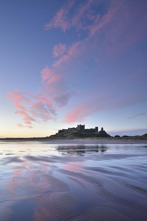 Bamburgh Castle Pink Dawn 3
