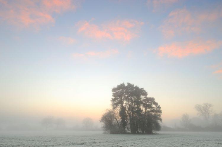 White Waltham Sunrise 2