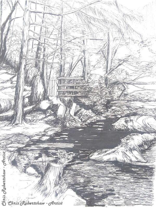 Gwydyr Forest near Betws-y-Coed