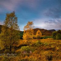 Autumn colours Glen Moriston