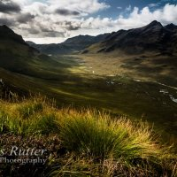 Grass and Heather above Glen Sligachan