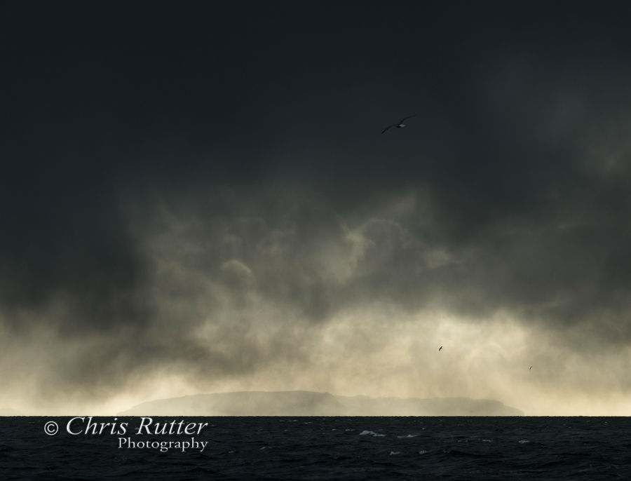 Storm and Gulls over Eigg