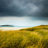 Wind blown grass Luskentyre