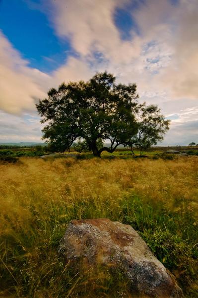 Lawrence Field, Peak District
