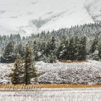 Falling snow Loch Cill Chriosd